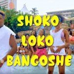 Jeff Akoh – Shokolokobangoshe [New Video]