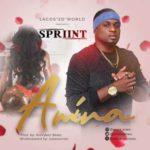 Spriint – Amina (Prod. by TeeVybez Beatz)