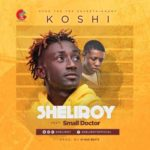 VIDEO: Sheliroy – Koshi ft. Small Doctor