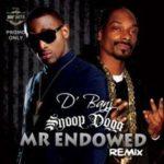 """THROWBACK: D'Banj – """"Mr Endowed"""" (Remix) ft. Snoop Dogg"""