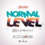 "[Video] DJ Kaywise – ""Normal Level"" ft. Ice Prince, Kly, Emmy Gee"
