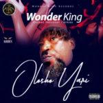 "[Song] Wonder King – ""Olosho Yari"""