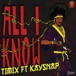 [Song] Timix – All I Know ft. Kaysnap