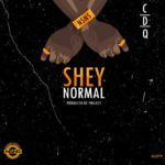"[Song] CDQ – ""Shey Normal"""