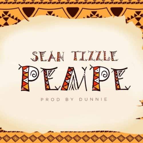 Mp3 Download Sean Tizzle pempe
