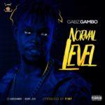 "[Song] Gabz Gambo – ""Normal Level"""