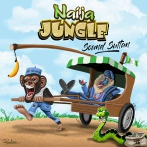 Sound Sultan – Naija Jungle Lyrics