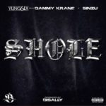 Song Yung6ix  8220Shole8221 ft Dammy Krane 038 Sinzu