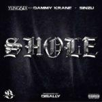 "[Song] Yung6ix – ""Shole"" ft. Dammy Krane & Sinzu"