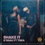 "[Lyrics] D'banj – ""Shake it"" f. Tiwa Savage"