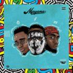 "DJ S4nti – ""Mayana"" ft Rhythm & Phoenix"