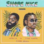 """Afro B x Vybz Kartel x Dre Skull – """"Shape Nice"""""""