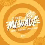 """DJ Spicey x Yung6ix x Terry Apala x Maleeq Souls – """"Nu Wave"""""""