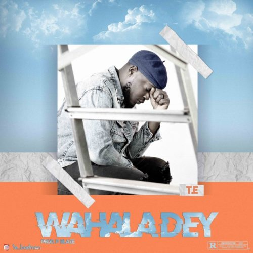 VIDEO & AUDIO: TE – Wahala Dey