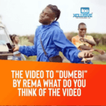 "What Do You Think Of Rema's New Video  ""Dumebi"" ?"