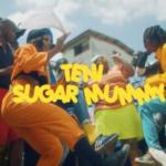 "[Video] Teni – ""Sugar Mummy"" (Starring Eniola Badmus)"