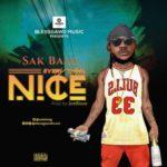 """Sak Baag – """"Everything Nice"""""""