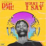 "Fireboy DML – ""What If I Say"" Lyrics"