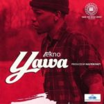 "Tekno – ""Yawa"" (Prod. By Masterkraft)"