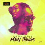 """Leeroy Afrika – """"Many Things"""""""