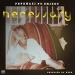 "Pepenazi – ""Necessary"" ft. Shizzo"