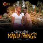 "[Video] Leeroy Afrika – ""Many Things"" ( Dir By Chidube IAC )"