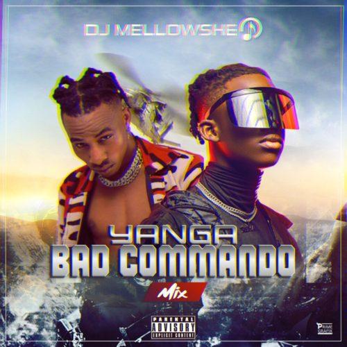 "DJ Mellowshe – ""Yanga Bad Commando Mix"" Previous:"