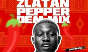 DJ Kaywise – Pepper Dem Mix