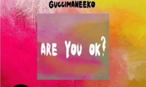 "Guccimaneeko - ""Are You Ok?"""