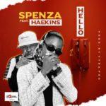 "Danny Spenza – ""Hello"" ft. Haekins"