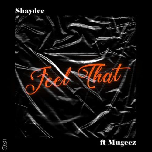 Shaydee Feel That ft Mugeez (R2Bees)