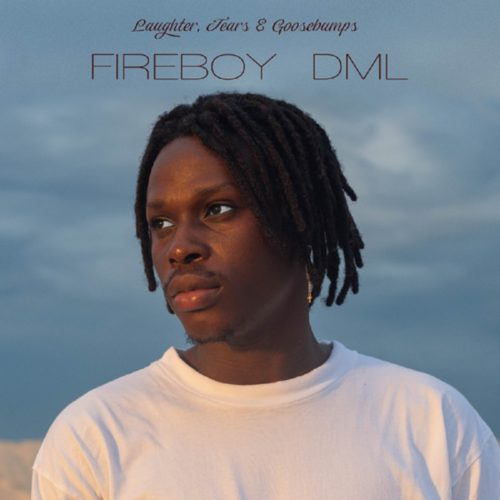 Album] Fireboy DML - Laughter, Tears & Goosebumps « tooXclusive