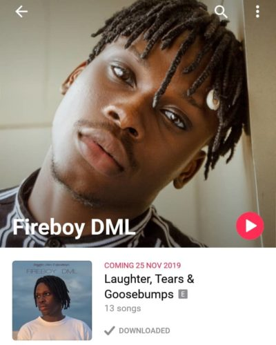 "YBNL's Fireboy Set To Drop Debut Album, ""Laughter, Tears & Goosebumps,"" Announces Release Date 2"