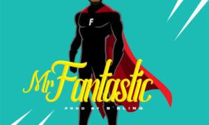 """Mr Flo - """"Mr Fantastic"""""""