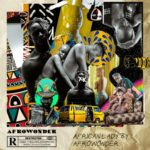 "[Audio + Video] Afro Wonder – ""African Lady"""