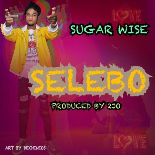 "Sugarwise - ""Selebo"""
