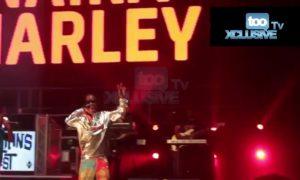Naira Marley, Marlian Fest UK