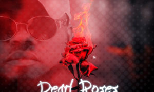 K'osii - Pearl And Roses