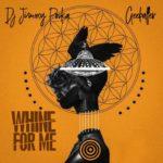 "Dj Jimmy Poska – ""Whine For Me"" Ft. Gee baller"