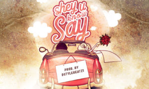 Ceepaul - Shey U Know Say
