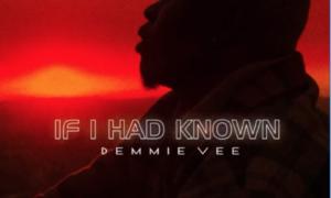 Demmie Vee If I Had Known Lyrics
