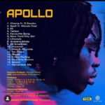 "Fireboy ""Apollo"" Album Lyrics Breakdown"