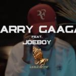 "[Audio + Video] Larry Gaaga x Joeboy – ""Slow Burner"""
