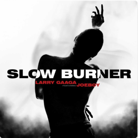 "Larry Gaaga x Joeboy – ""Slow Burner Lyrics"""