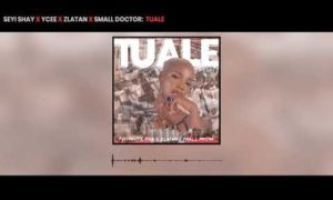 Seyi Shay, Tuale Lyrics, Ycee, Zlatan, Small Doctor