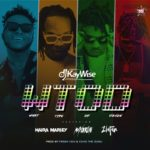 "[Lyrics] DJ Kaywise x Mayorkun, Naira Marley, Zlatan – ""What Type Of Dance"""