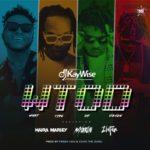 """[Lyrics] DJ Kaywise x Mayorkun, Naira Marley, Zlatan – """"What Type Of Dance"""""""