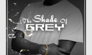 Gide Grey The Shade Of Grey
