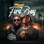 """[Mixtape] DJ Baddo – """"Best Of Fireboy Mix 2020"""""""