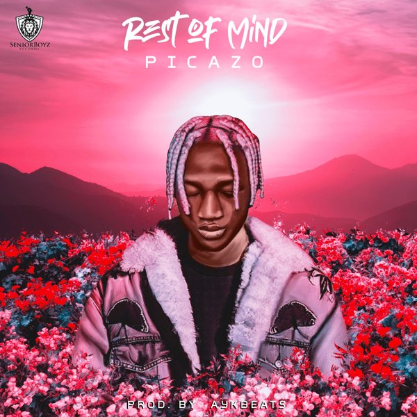 Picazo – Rest Of Mind